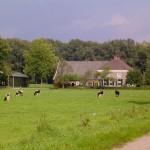 Omgeving camping Winterswijk